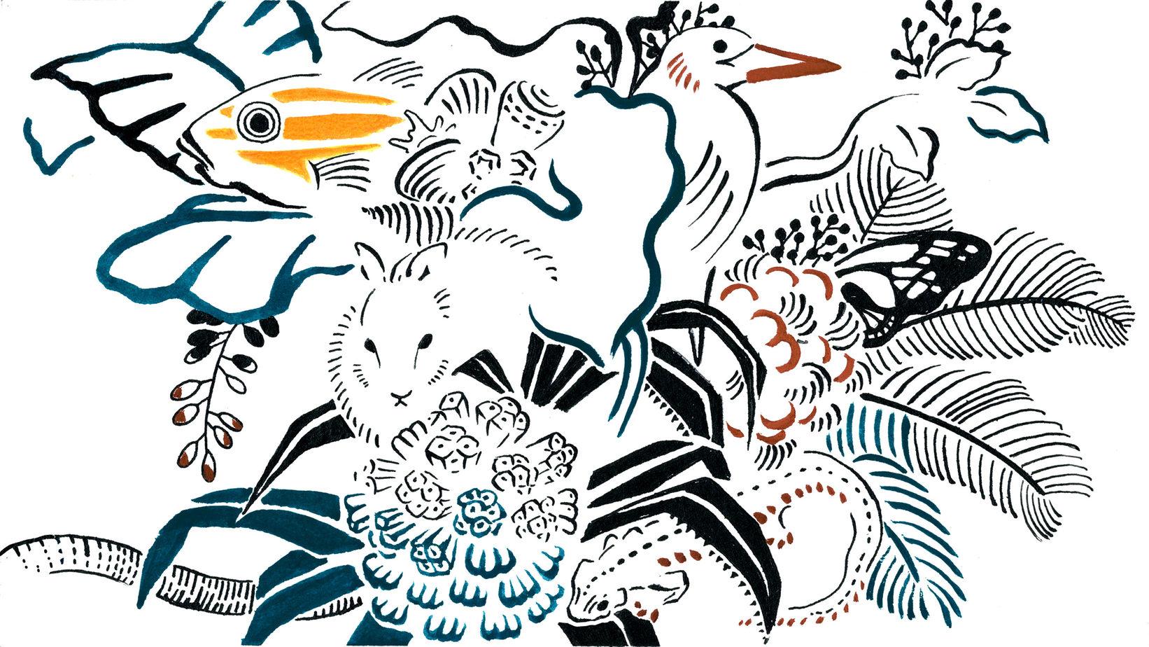 「「命のゆりかご」奄美大島の豊かな自然」のアイキャッチ画像
